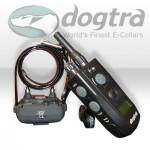 Elektryczna obroża do tresury psa Dogtra 620NCP